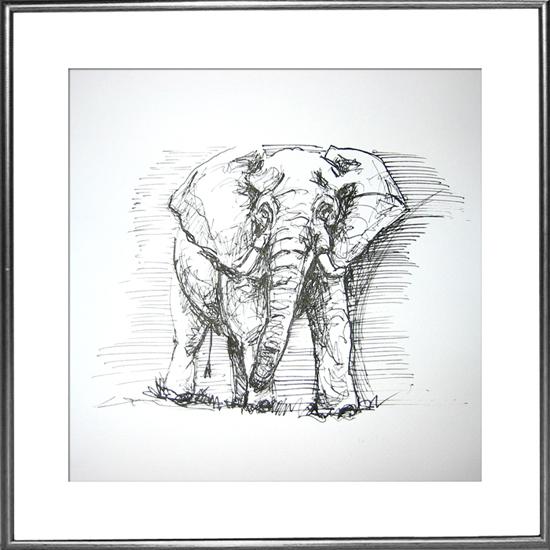 elefant_rahmen