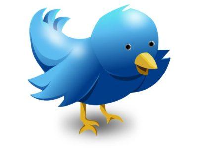Hat Ihnen auch ein Vögelchen gezwitschert, dass Twitter Ihnen Erfolg bringen kann?